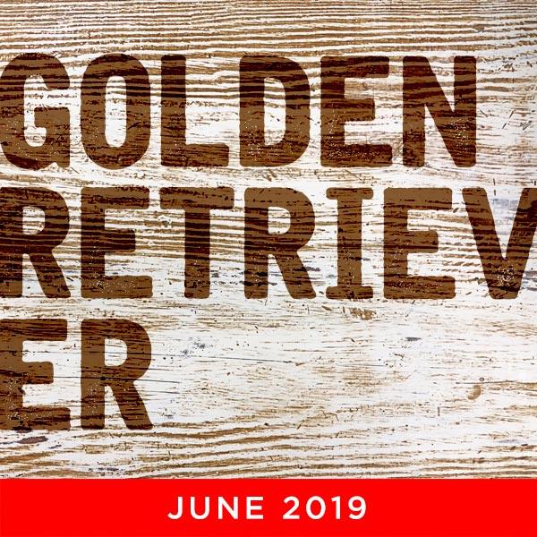 Golden Retriever Day
